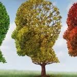 Memoria, QI e altre funzioni cognitive: come capire se diminuiscono?