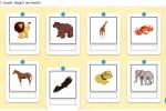Ortografia: dettato di parole (animali)