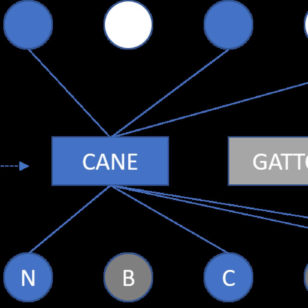 O modelo bidirecional da denominação