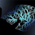 Kognitiivne defitsiit, mis ennustab sclerosis multiplexi suundumust 10 aasta pärast